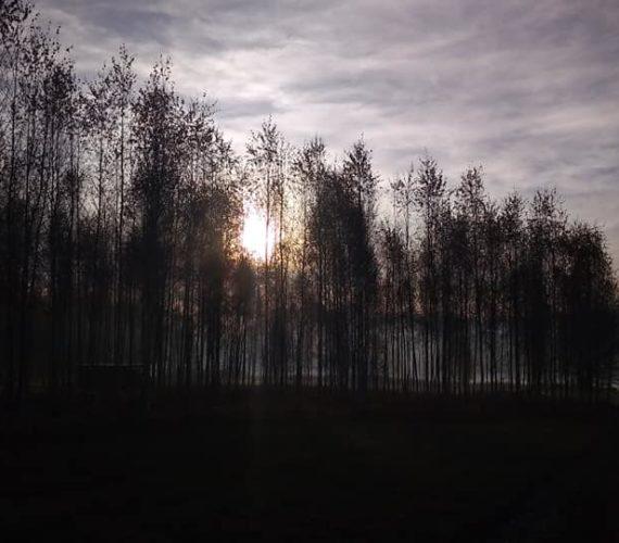 Прекрасные виды Территории Дзэн